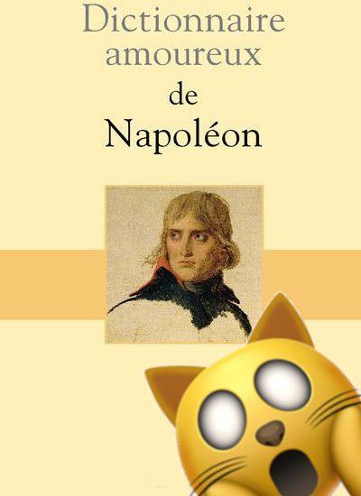 Dictionnaire-amoureux-de-Napoleon-tulard-chat