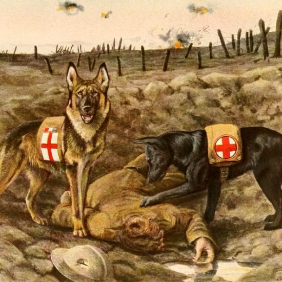 camarade-guerre-14-18