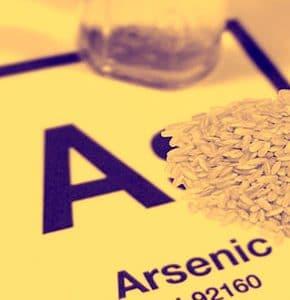 Napoleon_arsenic